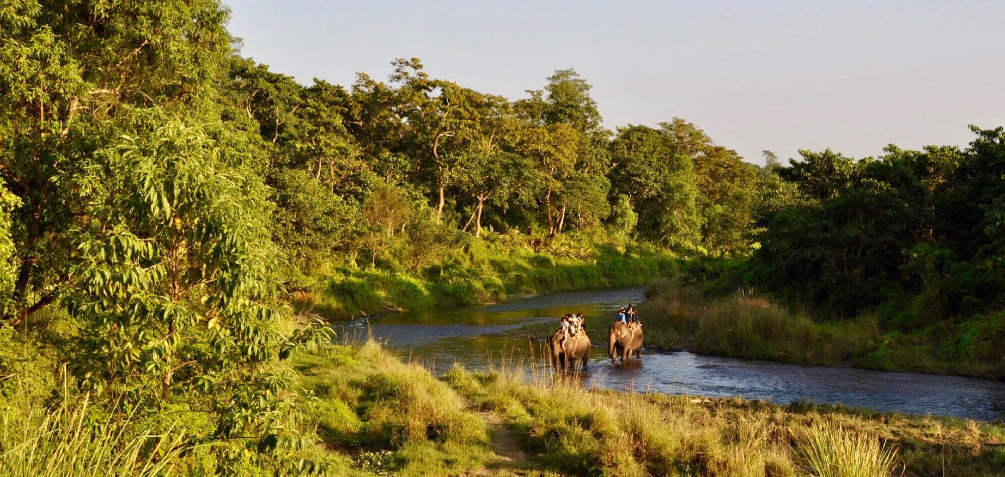 Trekking und Dschungel Safari