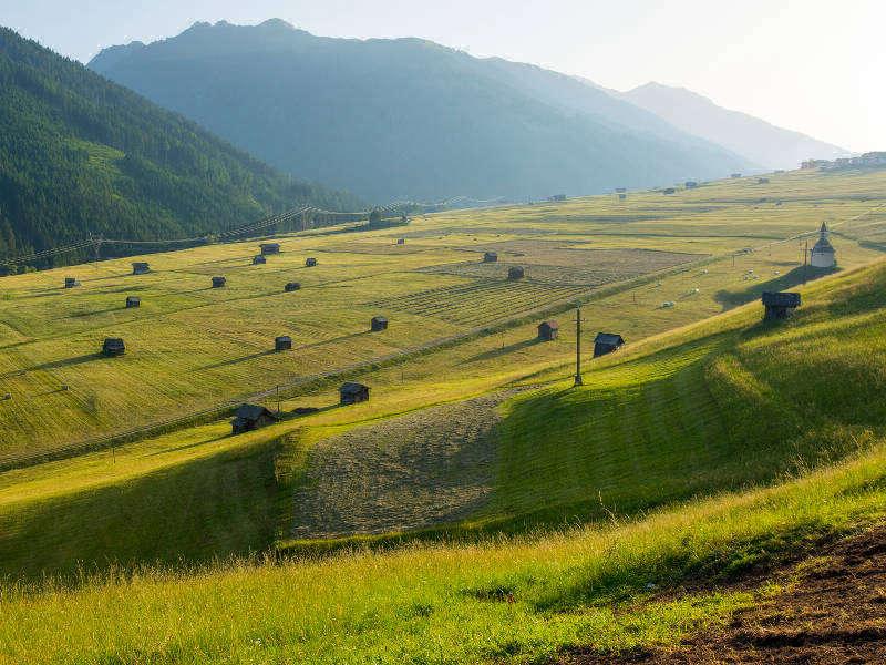 Höfe Trail Osttirol