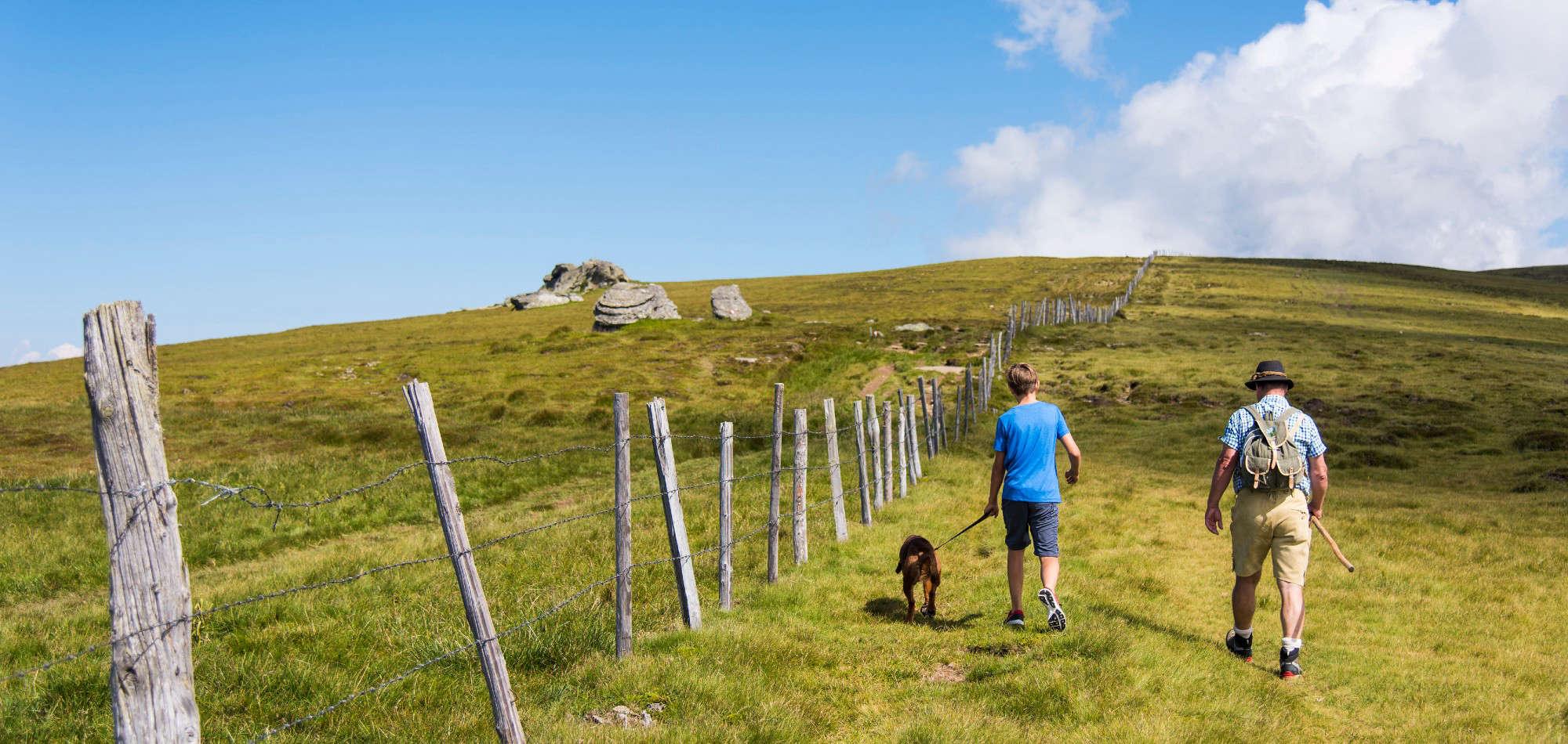 Wandern mit Hund am Panoramaweg Südalpen